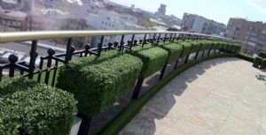 Artificial Boxwood Hedges From potstore.co.uk
